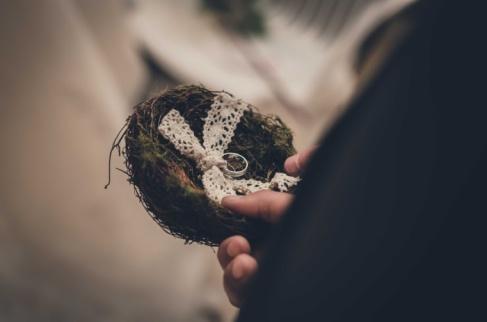 porte alliance; nid; dentelle, champêtre - échange des alliance- coussin d'alliances -love and do mariage